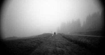 FoggyDay